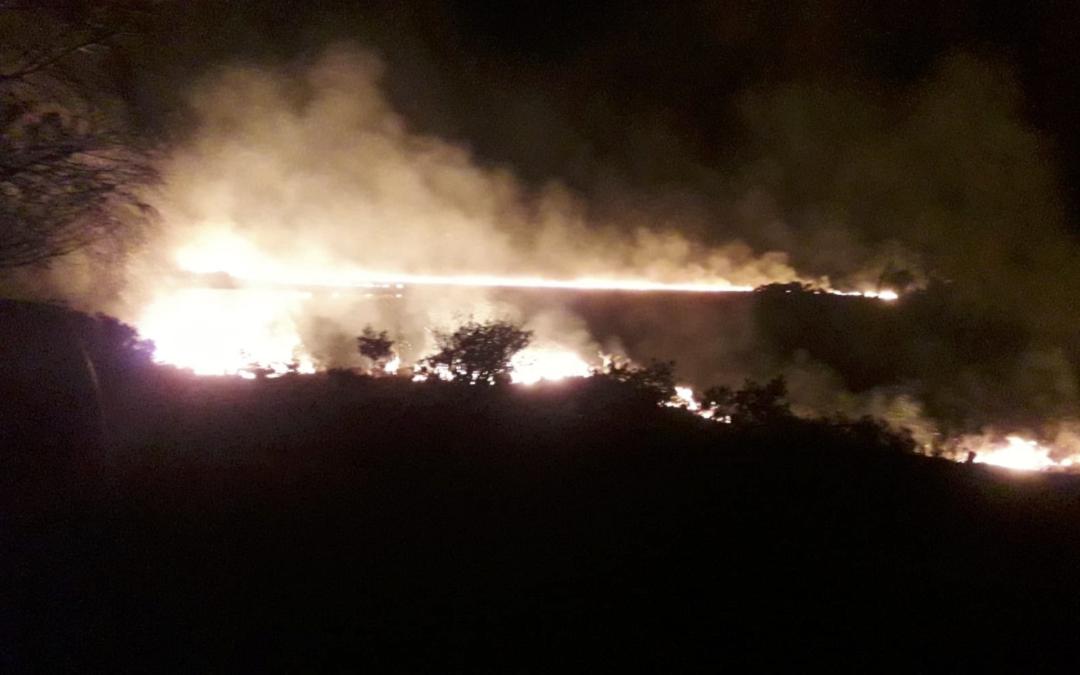 "Councillors condemn ""disgraceful act"" of illegal gorse burning"