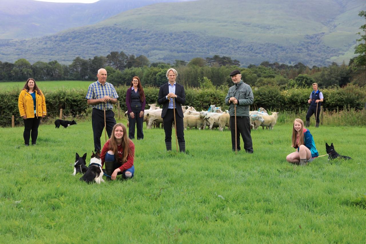 0205686_Irish_National_Sheepdog_Trials2.jpg