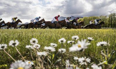 0210986_Killarney_Racecourse.jpg