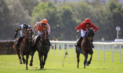 0211299_Killarney_Races_Autumn11.jpg